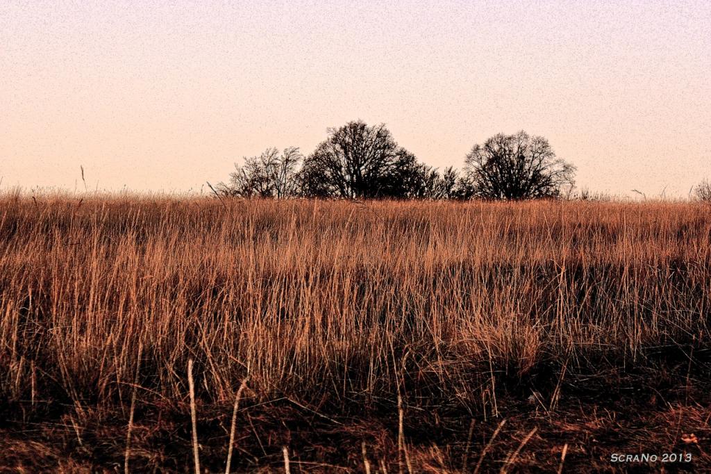 Felder und Wissen im November