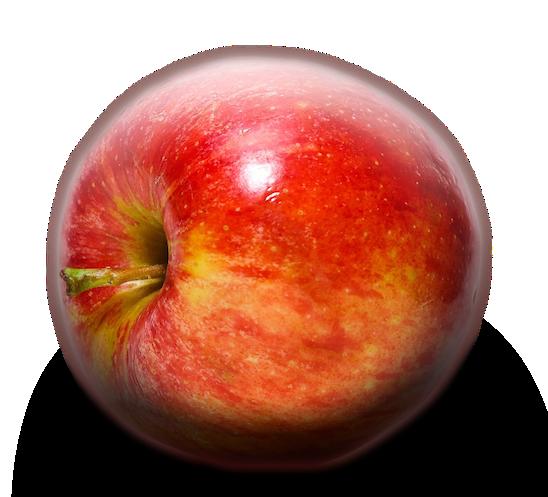 Nicht mehr so ganz knackig - der Techo-Apfel aus Cupertino.