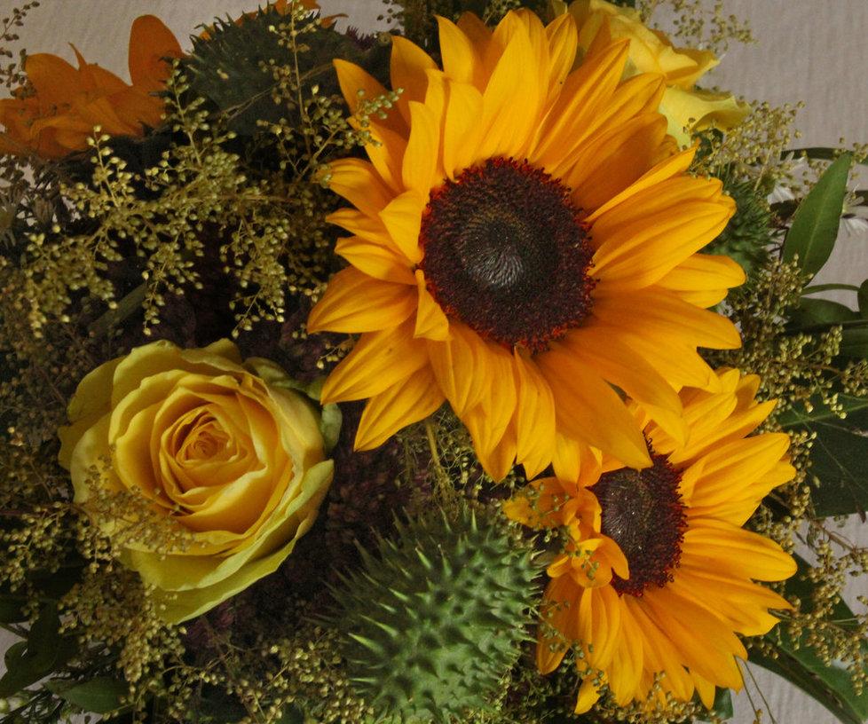 Ekstasy of Gold: Letzte Sonnenblumen im Herbst bringen noch etwas Sonnenglanz in die Wohnung.