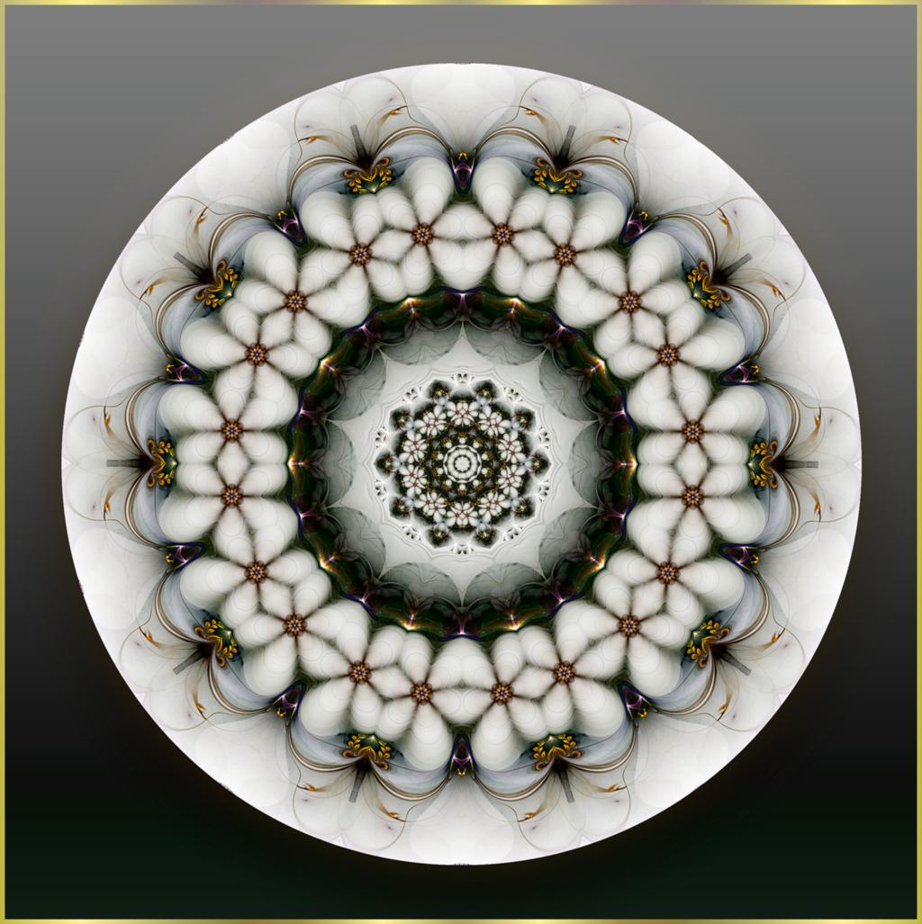 """Holunderblüten: In ihnen steckt die Kraft der """"Grossen Alten"""", Urmutter allen Lebens. ©scrano 2013."""