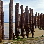 Pylonen aus Holz: St.Malo