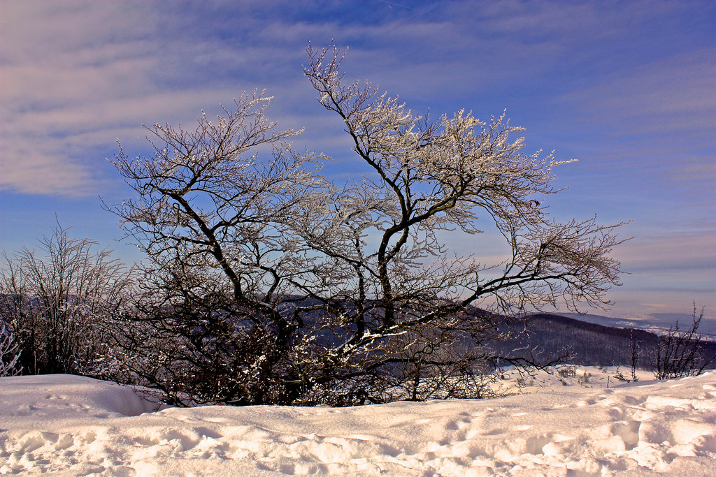 winter_at_breitenstein_iv_by_scrano-d9gj7wu