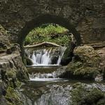 Wasserfallwiede: Brühlbach