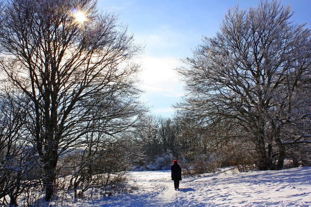 Winterspaziergang am Breitenstein.